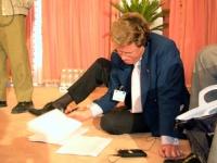 Gianfranco Dell'Alba (nel corso di una conferenza stampa introduttiva alla Conferenza di Sanaa).